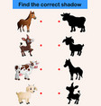 find correct shadow farm animals collection vector image