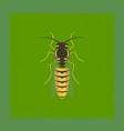 flat shading style insect wasp vector image