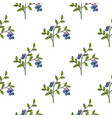 seamless pattern with bog blueberry vector image vector image