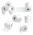 Toilet paper set vector image
