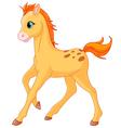 cartoon foal vector image vector image