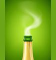 champagne wine bottle vector image vector image