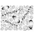 hand drawn background of lotus root and jackal juj vector image vector image