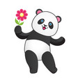 joiful panda with pink flower vector image vector image