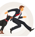 trained doberman catches man in suit by jacket vector image vector image