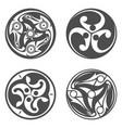 celtic spiral ornament geometric vector image