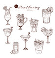 alcoholic cocktails hand drawn monochrome set vector image vector image