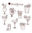 alcoholic cocktails hand drawn monochrome set vector image