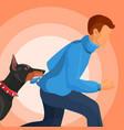 angry doberman holds man in teeth by sweater vector image vector image