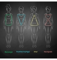 Chalked female body types vector image vector image
