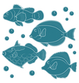 Collection of tropical reef fish vector image vector image
