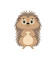cute hedgehog lovely animal cartoon character vector image vector image