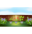 Different types of plant inside the wooden fence vector image
