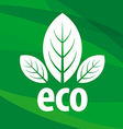 eco logo in the form of leaf vector image vector image