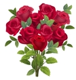 Realistic bunch of red roses vector image