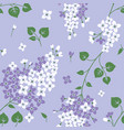 seamless pattern with lilac flowers floral vector image