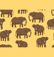 seamless pattern with of elephants vector image vector image