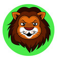 simple cartoon lion on white backgound vector image
