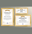 certificate template gift voucher for your vector image vector image
