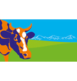 Color cow vector image
