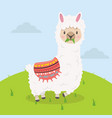 cute alpaca eat grass cartoon vector image
