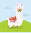 cute alpaca eat grass cartoon vector image vector image