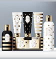 festive packaging toiletries set vector image vector image