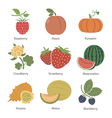 Fruits and berries vector image
