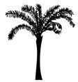 High quality original of palma vector image