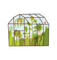 plants growing inside glass greenhouse glasshouse vector image