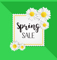 spring sale background with beautiful white vector image vector image