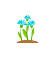 summer and spring blossom forest and garden blue vector image vector image