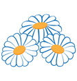 3 camomiles vector image vector image