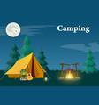 camping and mountain camp vector image