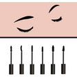 closed girls eyes and types of mascara vector image