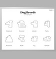 dog breeds icons line pack vector image