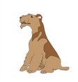 dog sitting lines vector image vector image