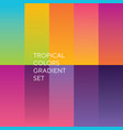 exotic sunset colors palette vector image