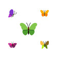 flat moth set of butterfly summer insect vector image vector image