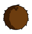isolated coconut icon vector image