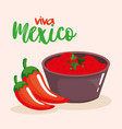 mexican chili pepper sauce vector image vector image