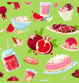 pomegranate fresh fruity food dessert ice vector image vector image
