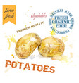 Potatoes watercolor banner vector image