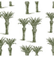 seamless background drawn palm trees vector image