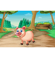 A pig at the forest vector image vector image