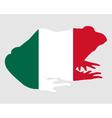 Bullfrog Mexico vector image vector image