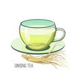 ginseng tea health herb food medicine concept vector image