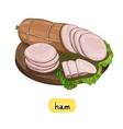 Ham on white background vector image