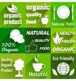 Organic flat icons vector image