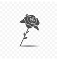 rose icon isolated on transparent background vector image vector image